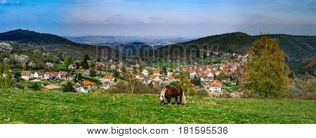 Brabancon Belgian Horse On The Farmland, Alsace, France