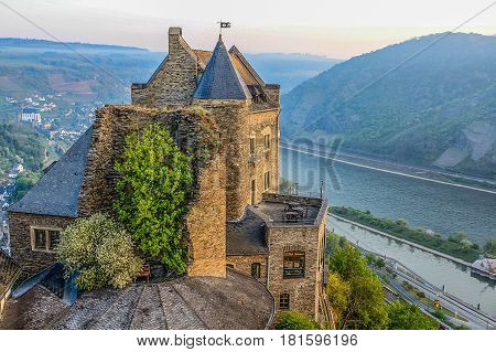 Medieval Castle and a Tree at Rhein Valley, Germany