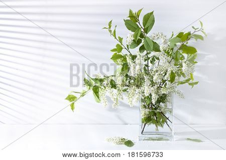 Beautiful flowers Cherry yellow and white on the table in the vase light from the window through the blinds gradation color shadow on the wall