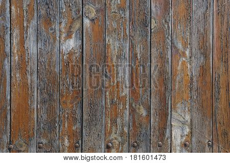 Old wooden gate with rivets, background texture