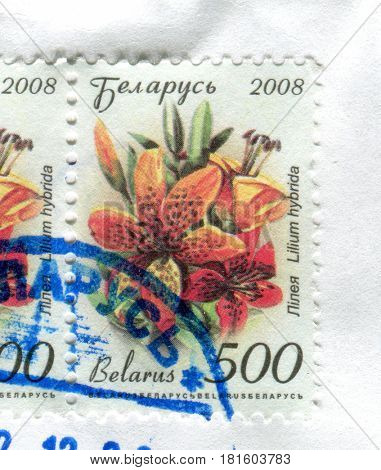 GOMEL, BELARUS, APRIL 11, 2017. Stamp printed in Belarus shows image of  The Lilium hybrida, circa 2008.