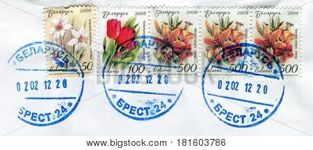 GOMEL, BELARUS, APRIL 11, 2017. Stamp printed in Belarus shows image of  The Narcissus hybridus, Tulipa gesneriana and Lilium hybrida , circa 2008.