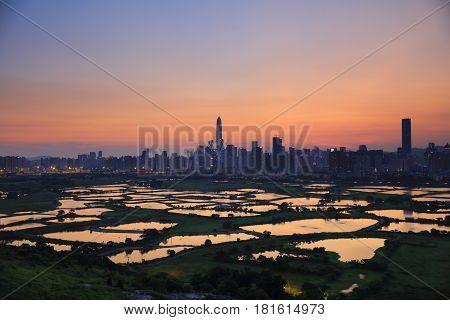 HK Countryside sunset rice field modern office buildings