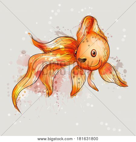 Beautiful marine fish. Goldfish. Valuehost red-orange.Watercolor vector.
