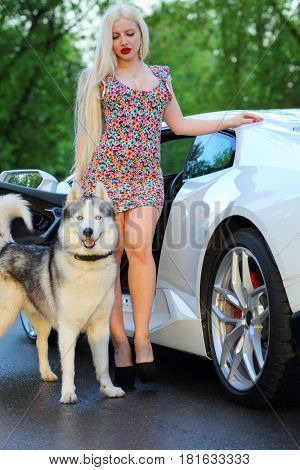MOSCOW - MAY 20, 2016: Woman (with MR) with husky near Lamborghini Huracan LP 610-4. Lamborghini Huracan is world first production car, using inertial navigation system