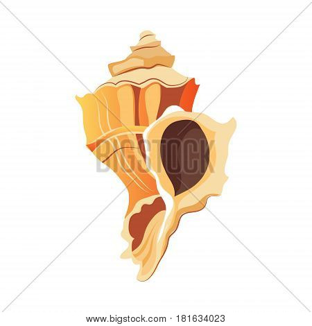 Rapana shell, an empty shell of a sea mollusk. Colorful cartoon illustration isolated on a white background