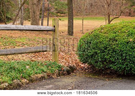 End of the wooden fence and part of bush closeup in the Lullwater Park Atlanta USA