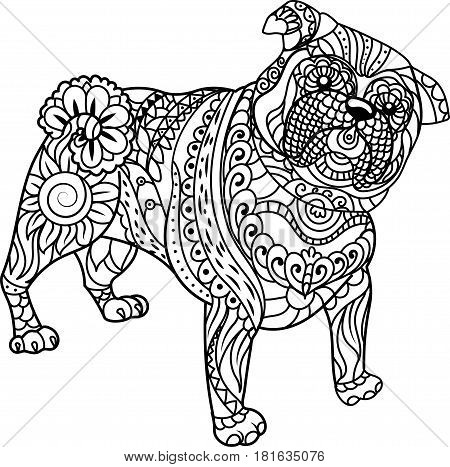 Little Pug on white background. Freehand sketch for adult anti stress coloring book page with doodle and zentangle elements.