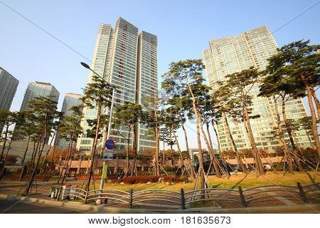 View from window of moving car up to modern highrise building on street in Seoul at autumn