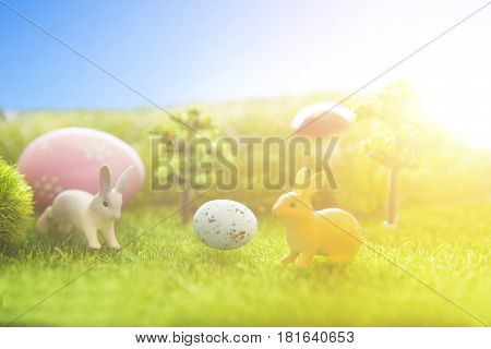 Rabbit On Grass With Easter Eggs In Park