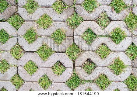 footpath block with green grass inside texture pattern background