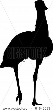 Silhouette of a wild kori bustard - digitally hand drawn vector silhouette, black isolated on white background