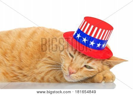 Tabby cat laying on a reflective surface with white background sleeping with a patriotic 4th of July hat on.