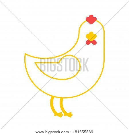 Chicken Isolated. Farm Bird On White Background