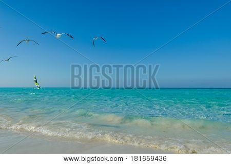 Tropical beach in island Cayo Santa María. Cuba