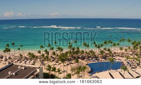 View of the beach with palm trees on top.