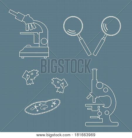 Stylized Icons Of Microscopes, Magnifiers, Amoeba, Ciliate-slipper. Laboratory Equipment Symbol.