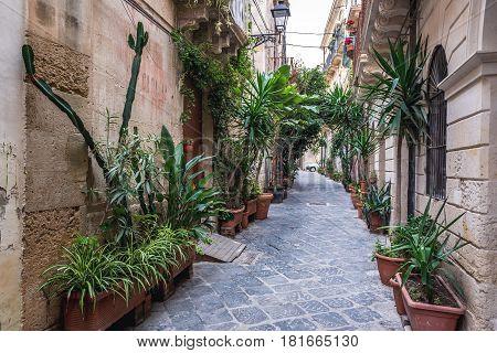 Street on Ortygia isle Syracuse city Sicily Island in Italy