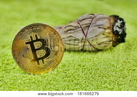 Gold Bitcoin Coin And White Salvia Plant
