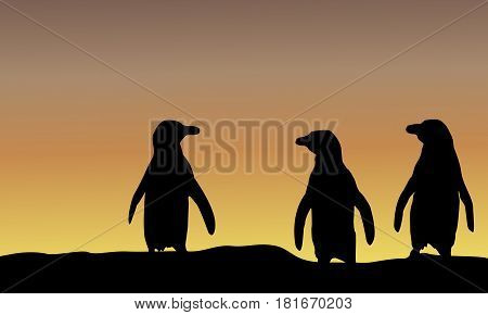 Silhouette of penguin at sunset scenery vector illustration