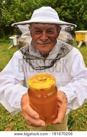 Senior apiarist presenting jar of fresh honey in apiary