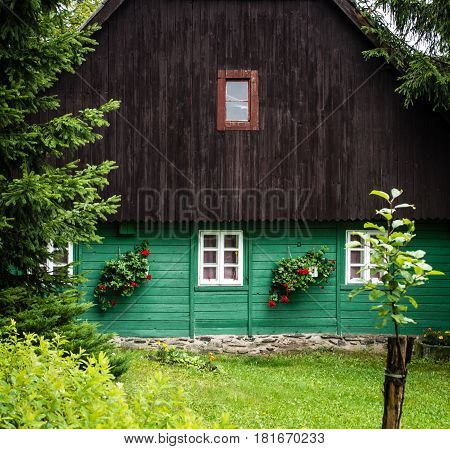 Detail of traditional mountain chalet, cottage or hut made of wood surrounded by spruce trees, painted green and brown with lawn in front of, relaxing vacation, local accommodation in Czech republic, central Europe, Orlicke hory