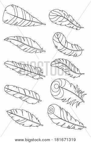 Amazing bird feathers. Vector. Set collection. Creative bohemia concept for wedding invitations cards tickets congratulations branding logo label emblem. Black and white