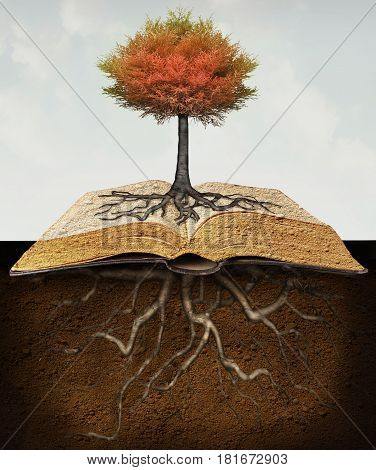 Conceptual image representing a rooted tree above an open book with roots in the underground