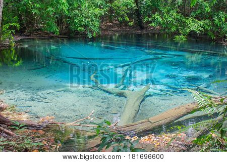 Clear emerald pond in tropical forest or Blue Pool at Krabi Province, Southern of Thailand.