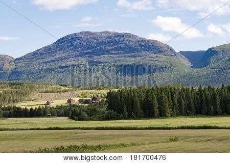 Farmhouses in the mountain. Shot from Hemsedal Norway