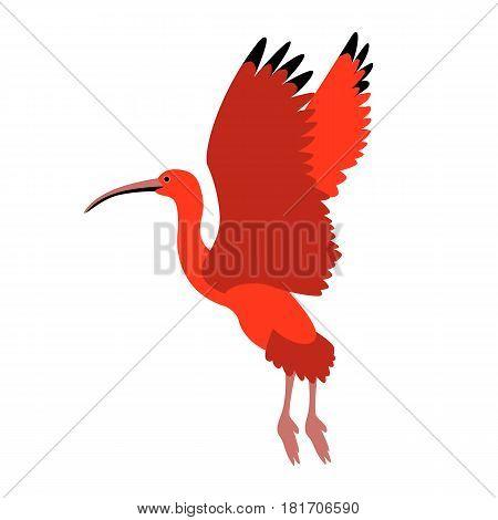 scarlet ibis vector illustration style Flat side
