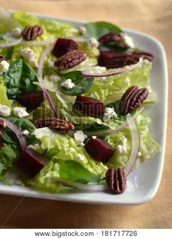 Salad on a white plate made using roasted beets, goat cheese (chevre), toasted pecans, romaine lettuce, baby spinach and purple onion.
