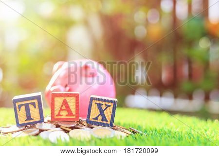 Tax Write In Color Alphabet Wood Box On Stack Of Thai Baht Coin And Pink Piggy Bank With Right Free
