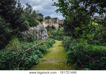 Tourist alley in ancient quarry Neapolis Archaeological Park in Syracuse Sicily Island of Italy