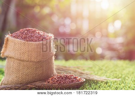 Red Thai Jasmine Rice In Small Sack On Green Grass With Sunlight Blur And Background In Morning Time