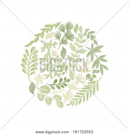 Round green floral hand drawn composition vector isolated on white background. Greenery leaf arrangement. Spring doodle botanical decoration