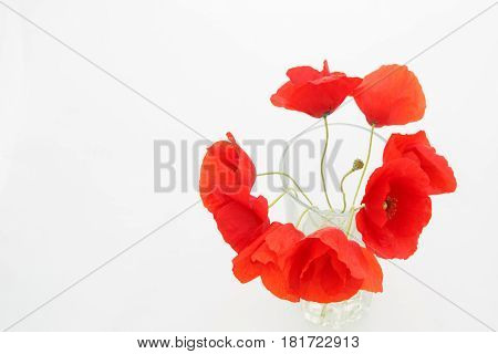 White Background With Empty Place For Inscription With  Red Poppies In A Transparent Glass