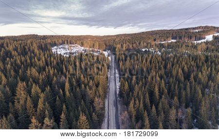 Aerial view of road & trees at sunset