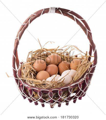 Chicken eggs in the straw on white background.