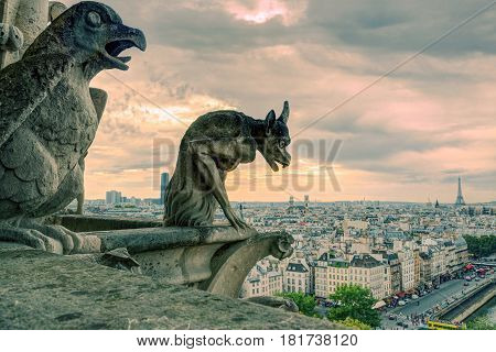 Chimeras (gargoyle) of the Cathedral of Notre Dame de Paris overlooking Paris, France