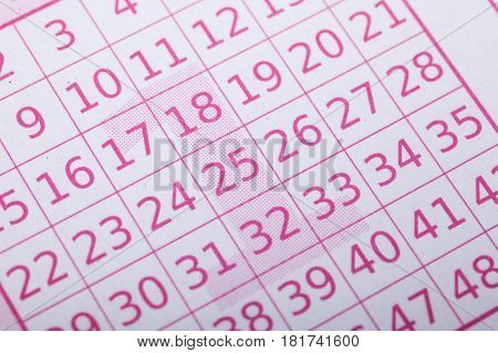 Closeup of lottery ticket numbers. Lotto ticket