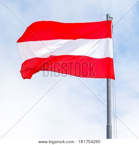 Waving Austrian flag red and white square format