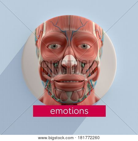 Facial muscles infographic. Facial emosions. 3d illustration.