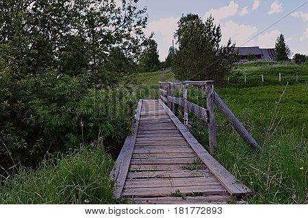 wood bridge  path nature stairs trees village  greens summer desolation day