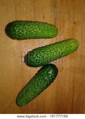 Cucumber is the subject of agricultural greenhouse cucumbers herb widely used in cooking