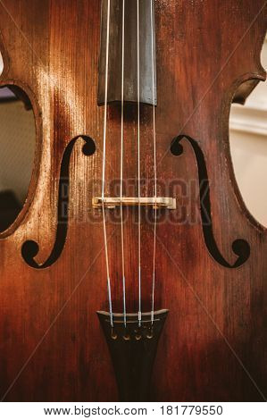 Close-up of cello, classical music concept, vertical photo