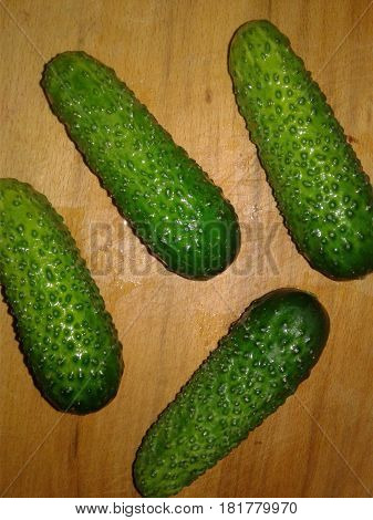 Cucumber Cucumber is the subject of agricultural greenhouse cucumbers herb widely used in cooking