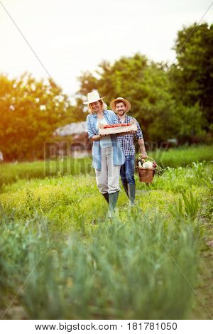 Woman and man bringing fresh vegetables in basket from garden