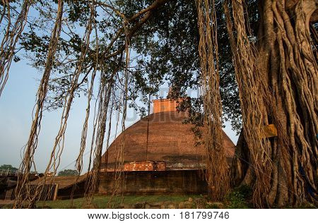 Jetavaranama dagoba stupa, Anuradhapura, Sri Lanka, it is the largest brick building of the old world