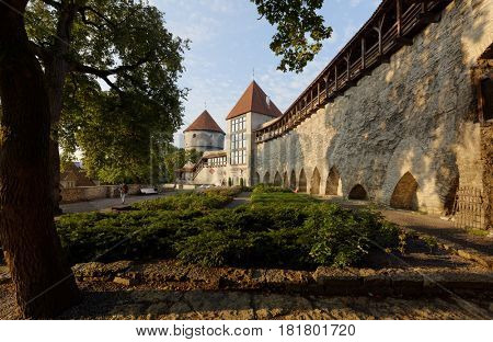TALLINN, ESTONIA - AUGUST 20, 2016: People resting in Danish King's Garden. A tiny plot of land right at the foot of the city wall has always remained undeveloped and belonged mostly to the city